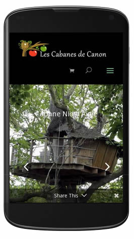 cabane-insolite-mobile-friendly