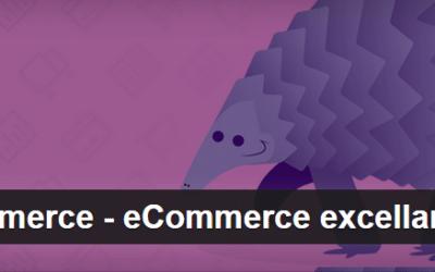 Wocommerce – ecommerce
